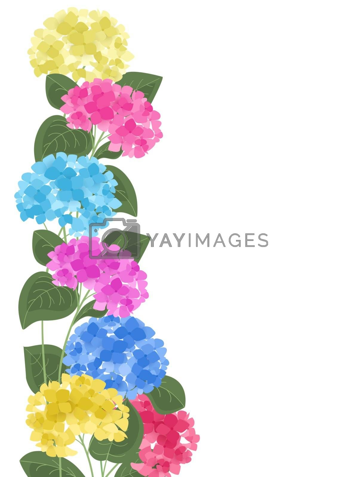 Vector illustration of hydrangea flower. Background with floral decorations