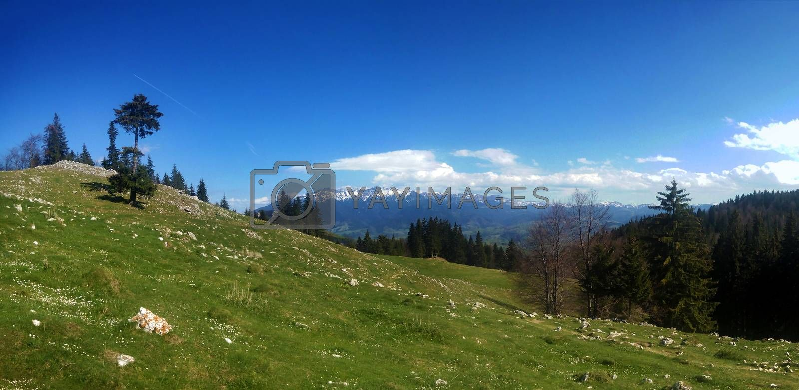 Panoramic view of Mount Bucegi on spring, part of the Carpathian Range from Romania