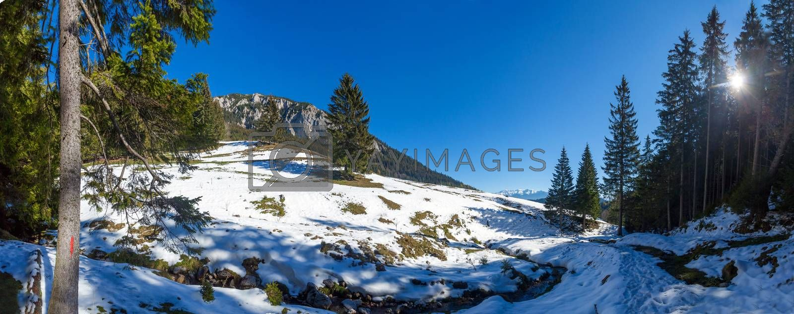 Panoramic view of Mount Piatra Craiului on winter, part of the Carpathian Range from Romania