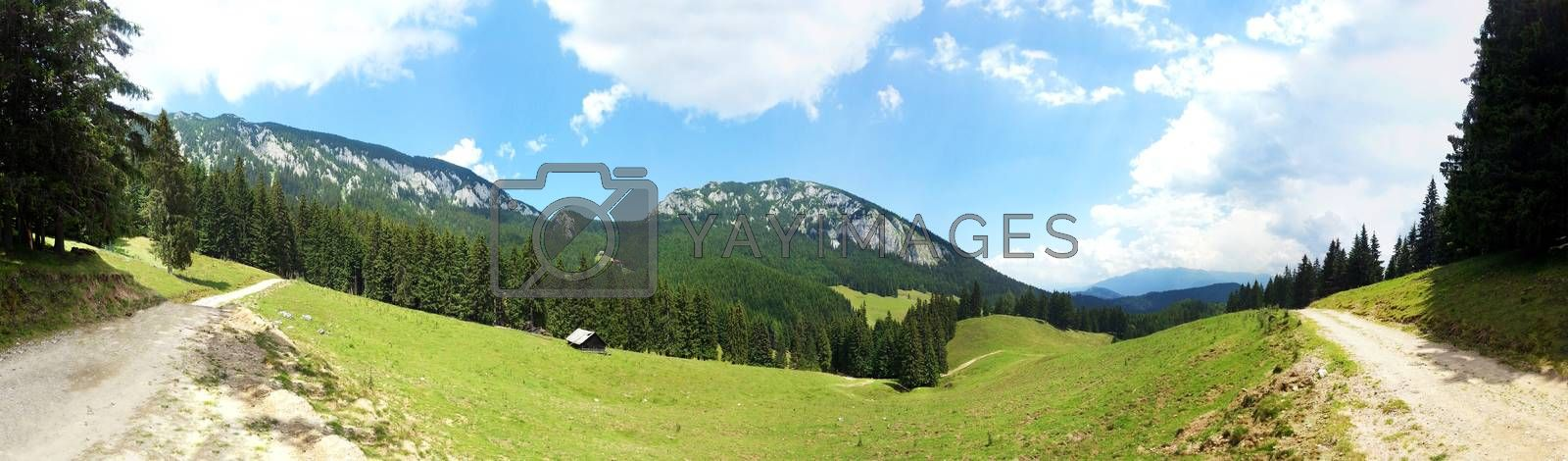 Panoramic view of Mount Piatra Craiului on summer, part of the Carpathian Range from Romania