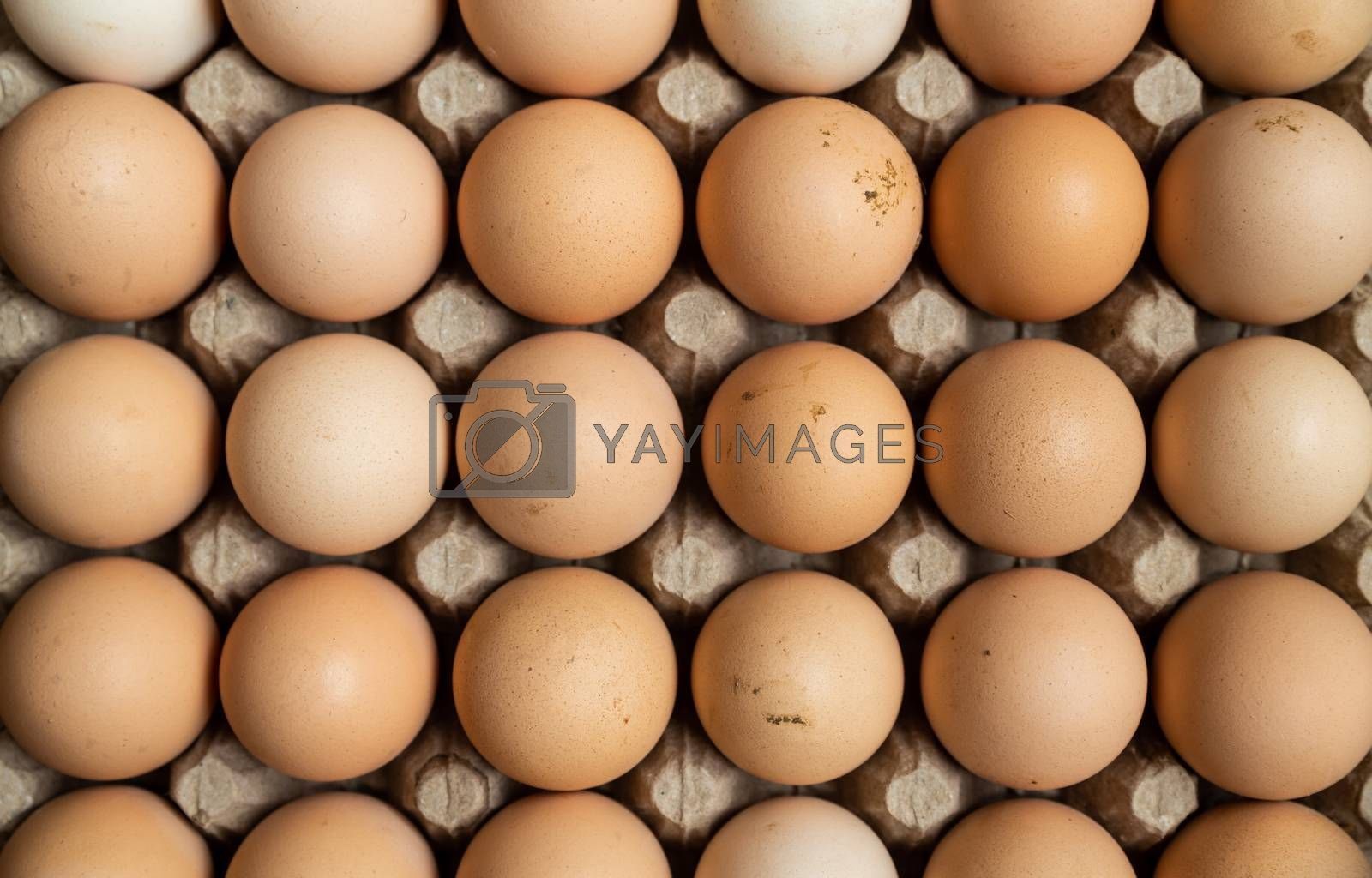 Overhead view of free range organic chicken eggs in tray. Some eggs are dirty.