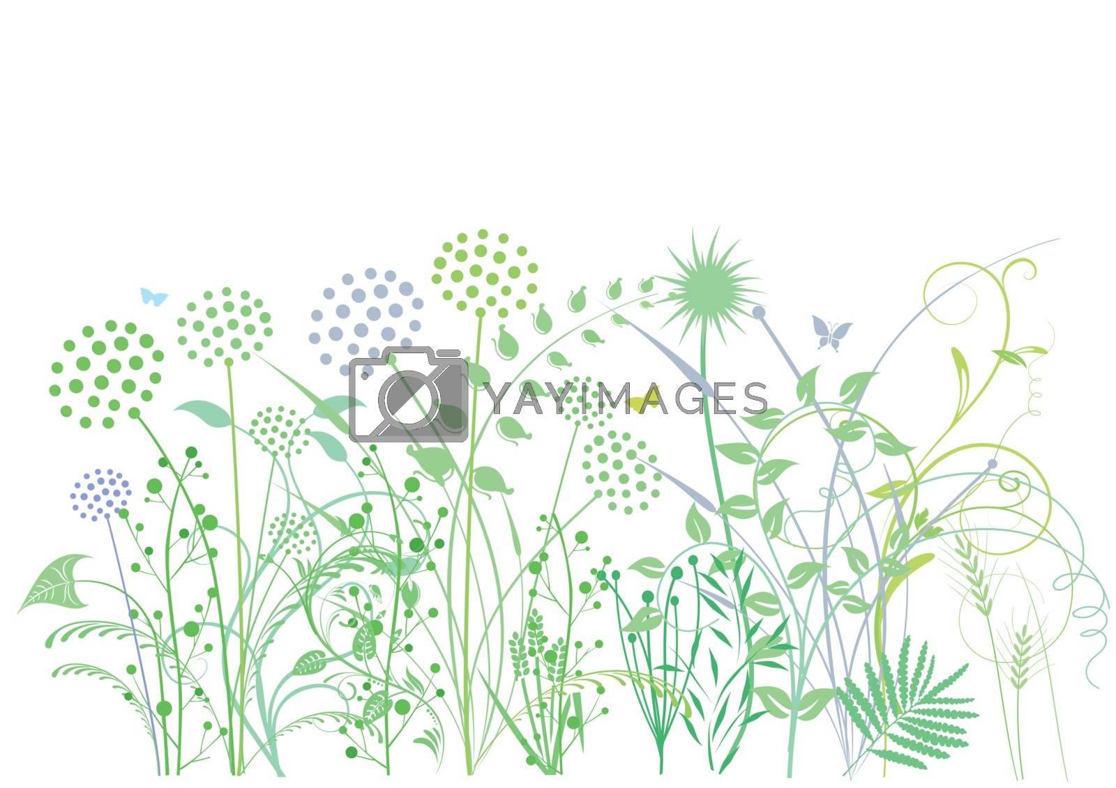Grasses, herbs, plants, illustration