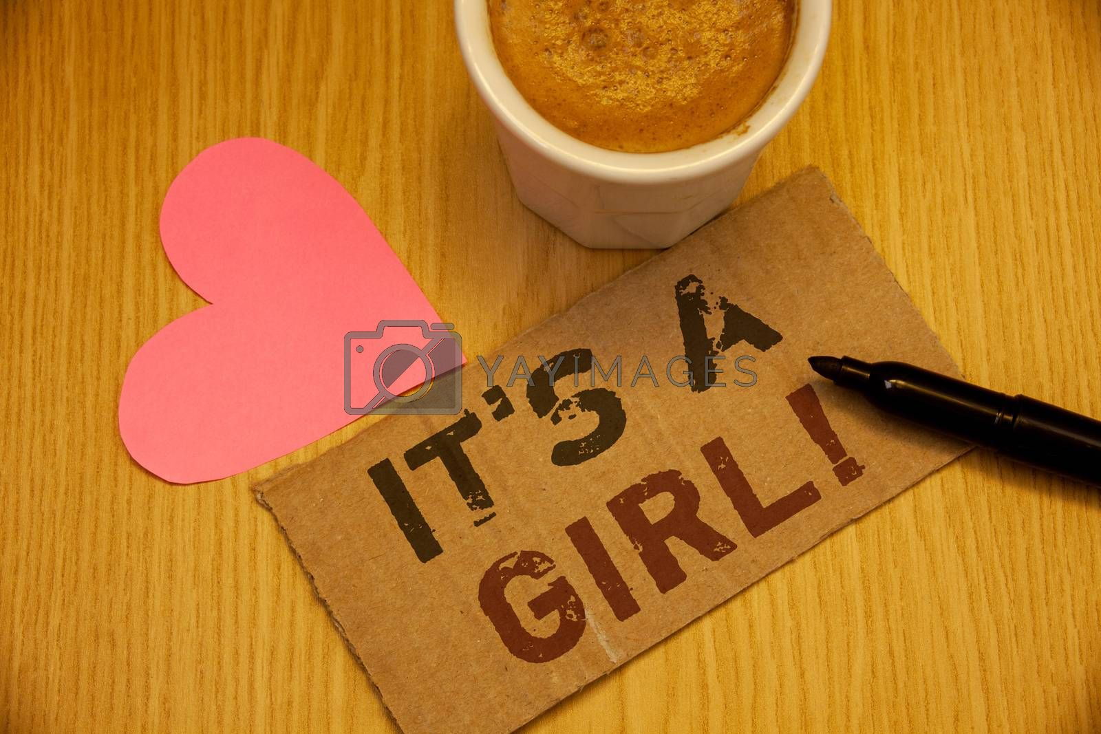 Conceptual hand writing showing It Is A Girl Motivational Call. Business photo textss Female baby coming Gender reveal Celebration