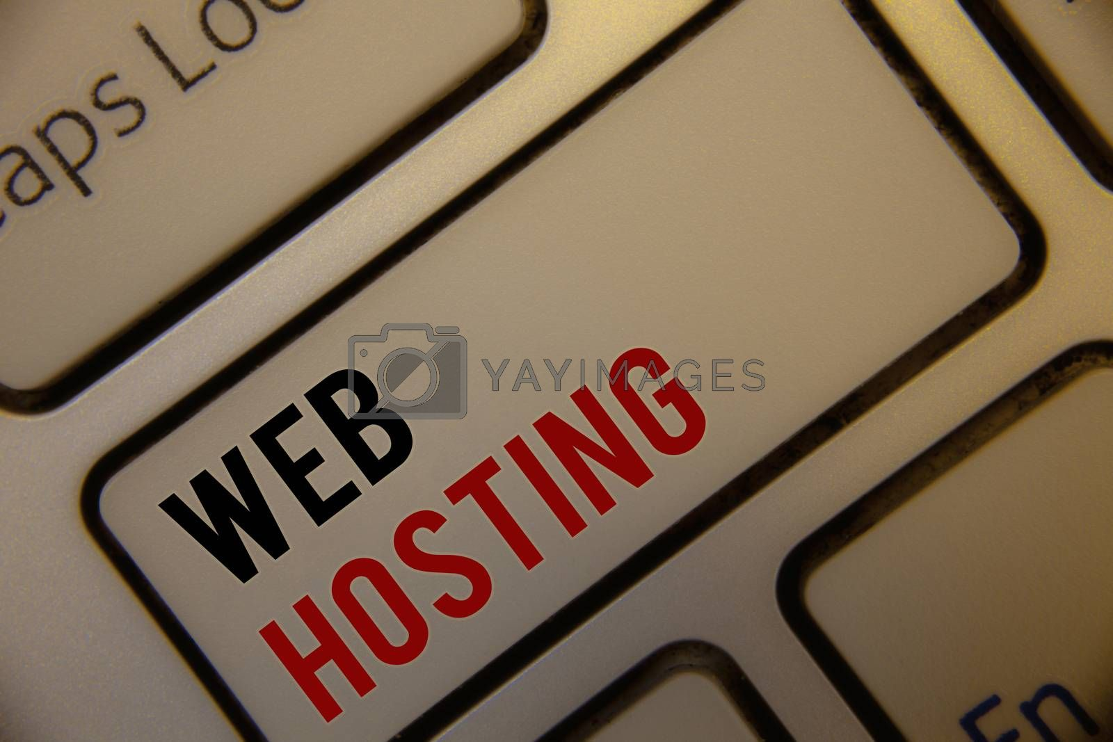 Text sign showing Web Hosting. Conceptual photo Server service that allows somebody to make website accessible