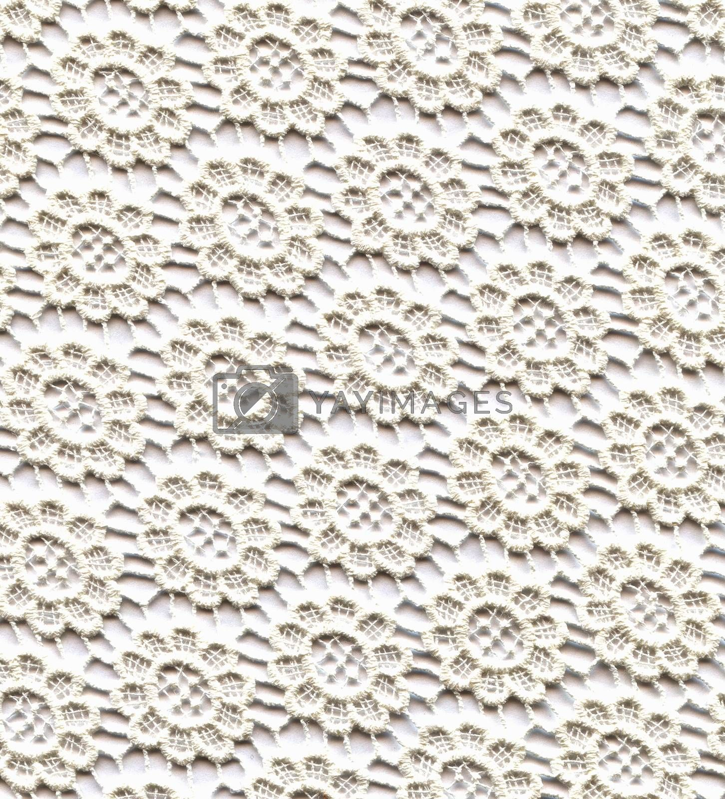 Wedding Lace Pattern. Light White Color Background