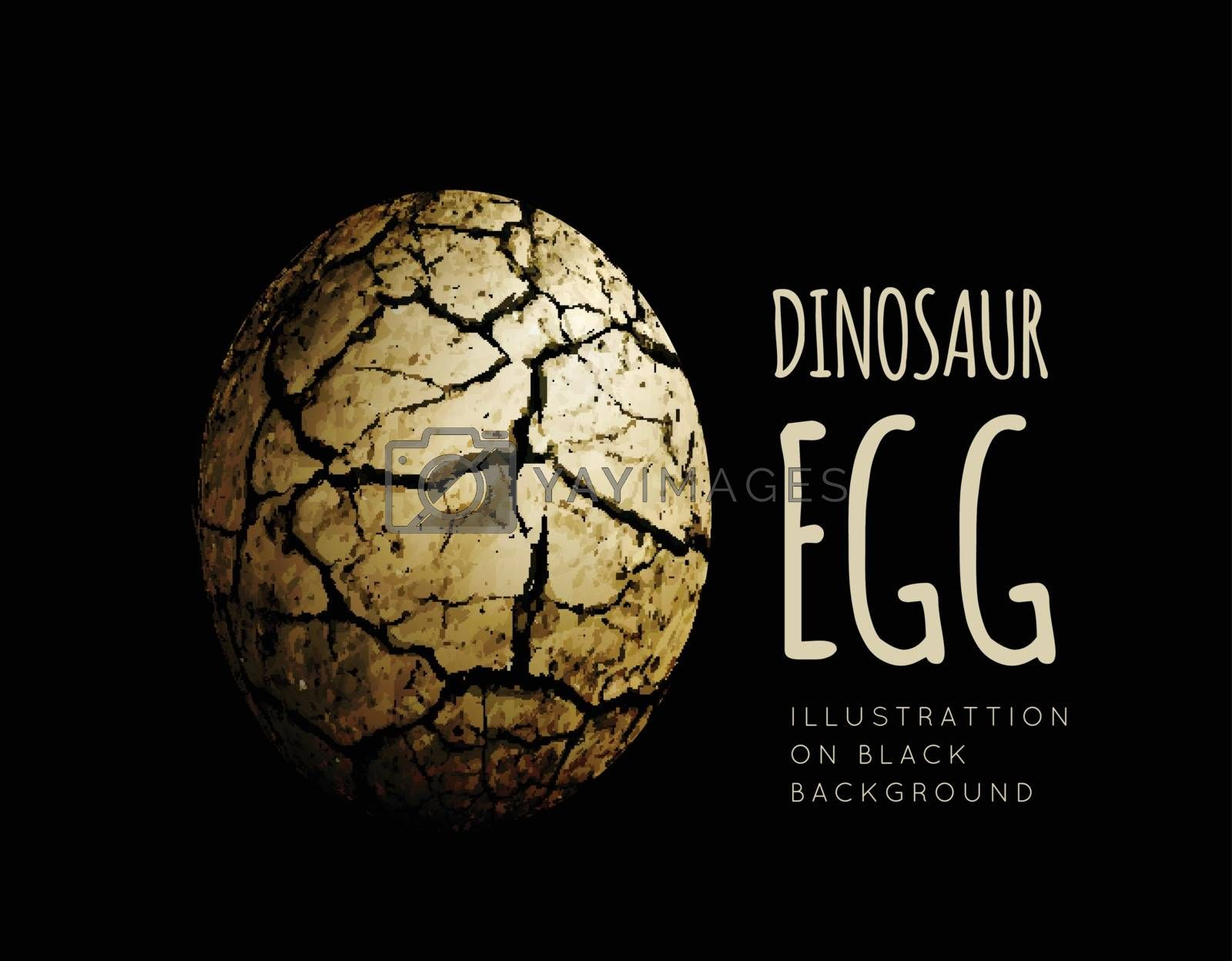 Egg of a dinosaur on a black background. Realistic vector illustration