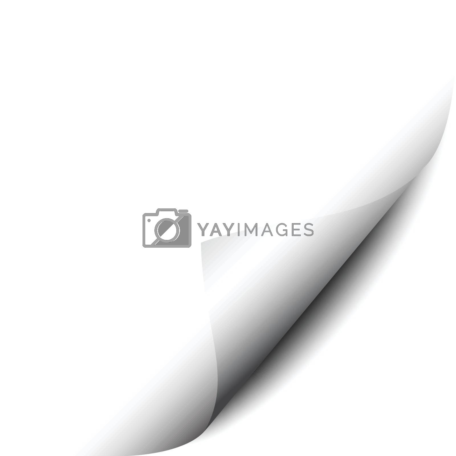 Page curl vector illustration on white background