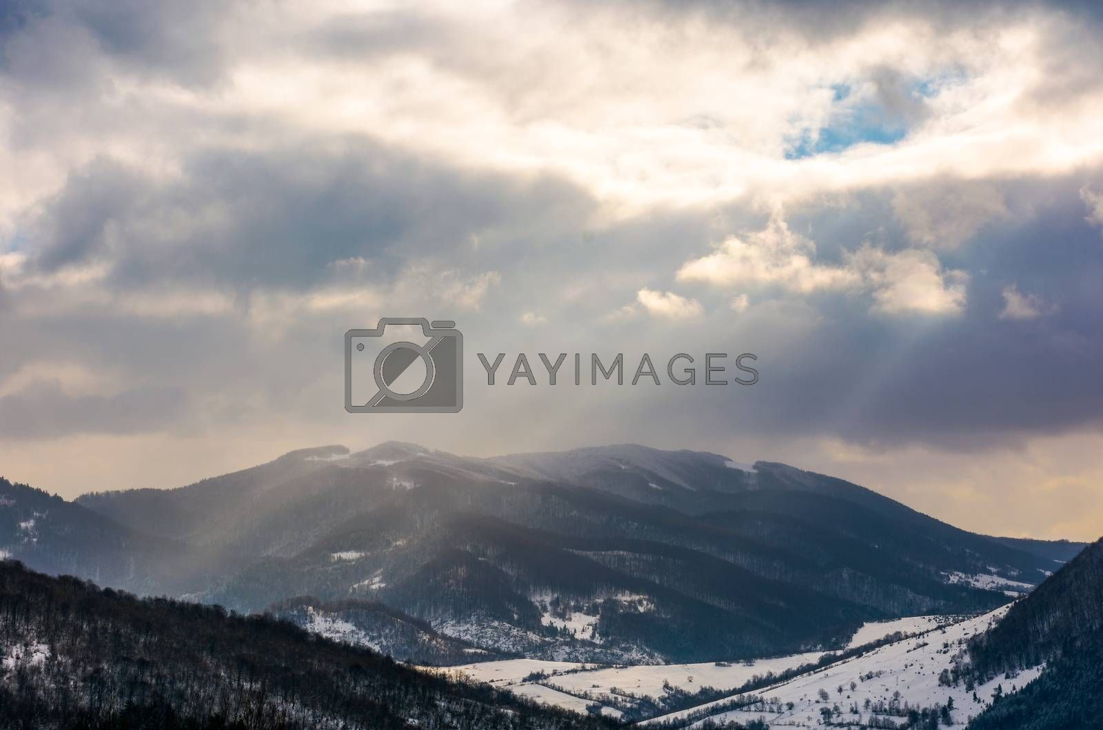 stormy winter sky over rural area in mountains near spruce forest