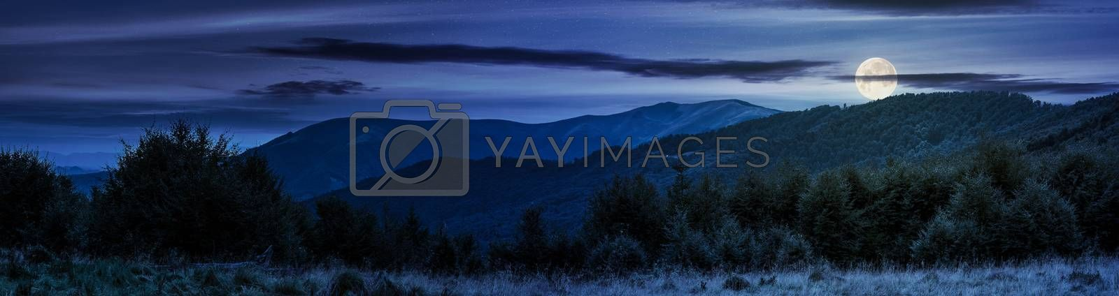 panorama of Carpathian mountains at night in full moon light. beautiful landscape with forested hills and Apetska mountain in the distance.