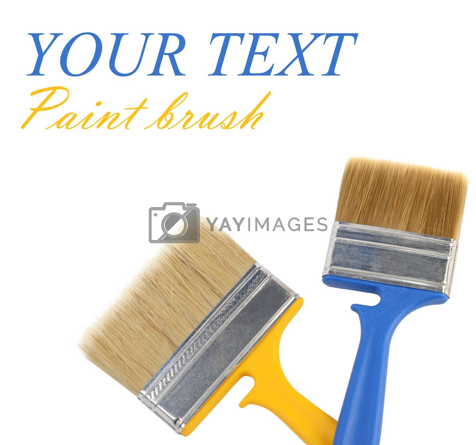 Brush for painting paint isolated on white