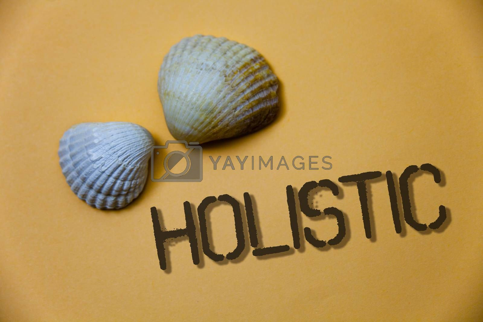 Handwriting text writing Holistic. Concept meaning Belief the parts of something are interconnected Related to holism Grunge ideas messages shells light brown background beach memories thoughts