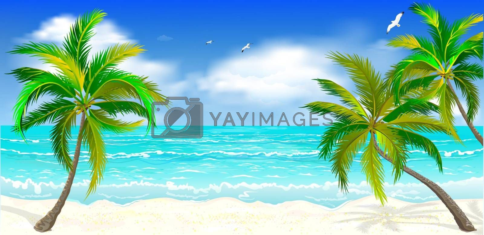 Landscape of the tropical shore. Landscape of the sea shore with palm trees. Sea shore with palm trees, blue sky and white clouds. Palm trees against the background of the sea, sky and clouds.