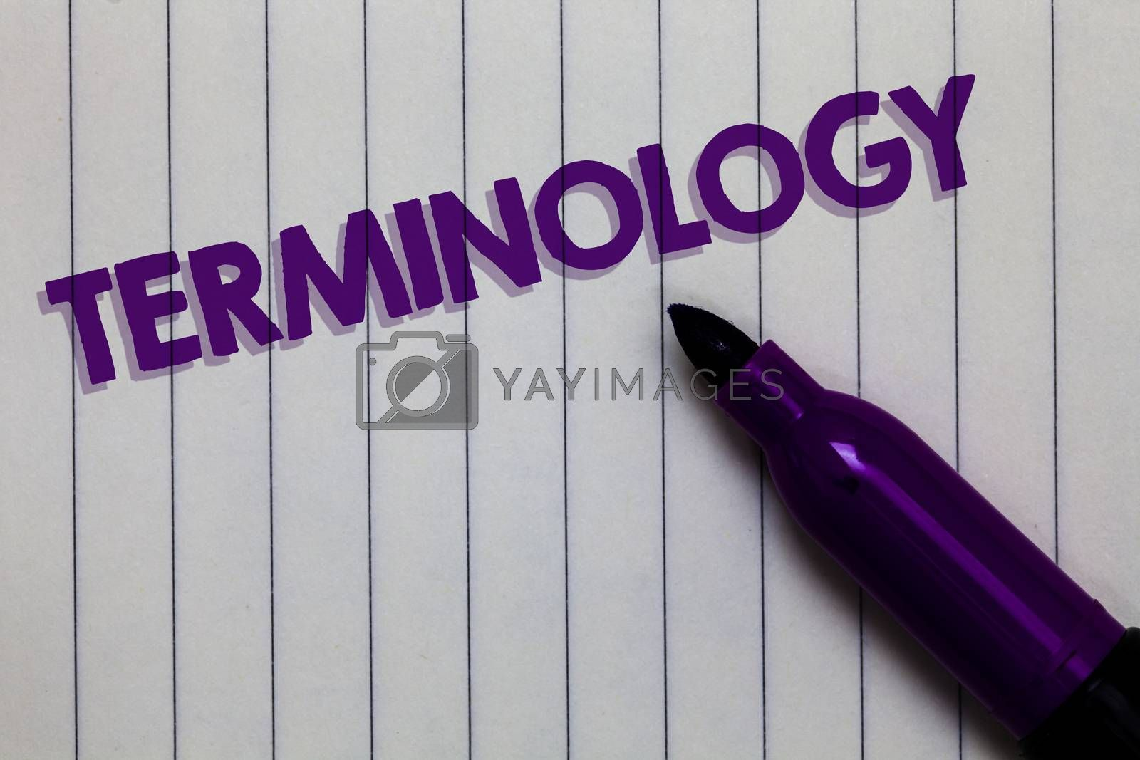 Text sign showing Terminology. Conceptual photo Collection of terms used by different profession study industry Notepad marker pen ideas thoughts white paper important black shadow