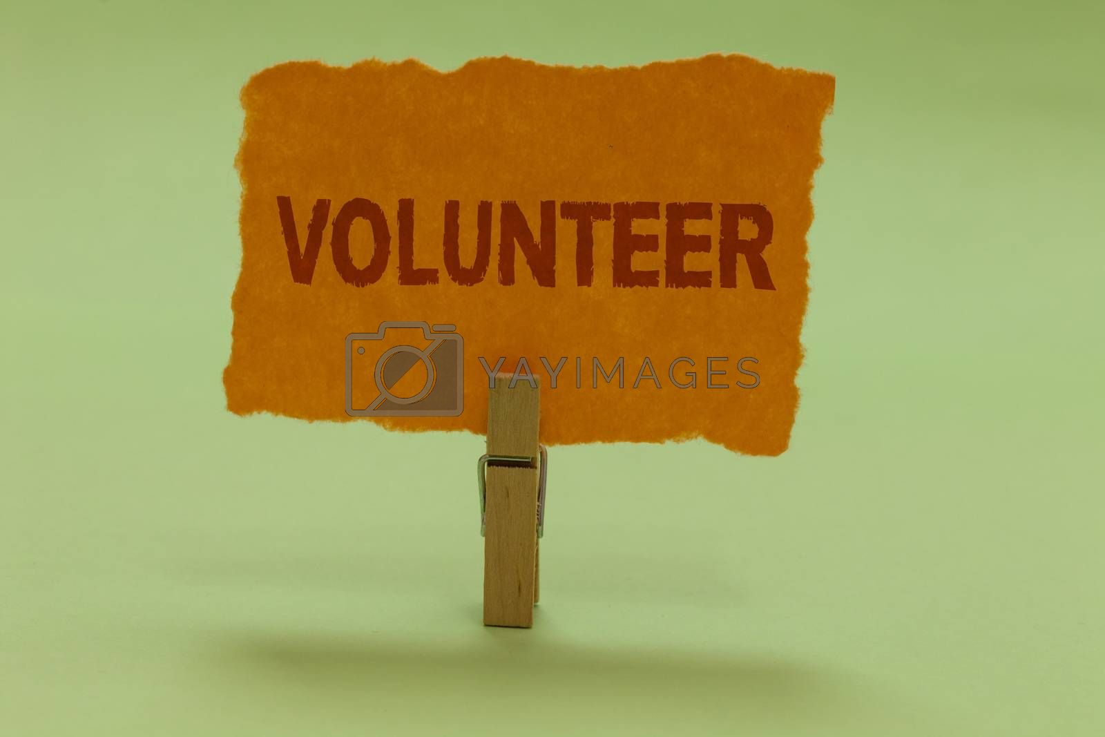 Writing note showing Volunteer. Business photo showcasing Volunteering individual for greater social cause serving others Nice lime colour grey shadow art work board important clip paperclip