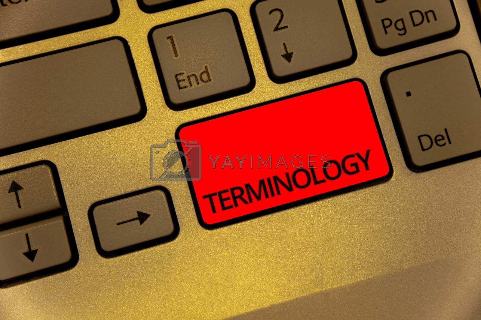 Text sign showing Terminology. Conceptual photo Collection of terms used by different profession study industry Keyboard brown key yellow laptop creative computer keypad netbook notebook