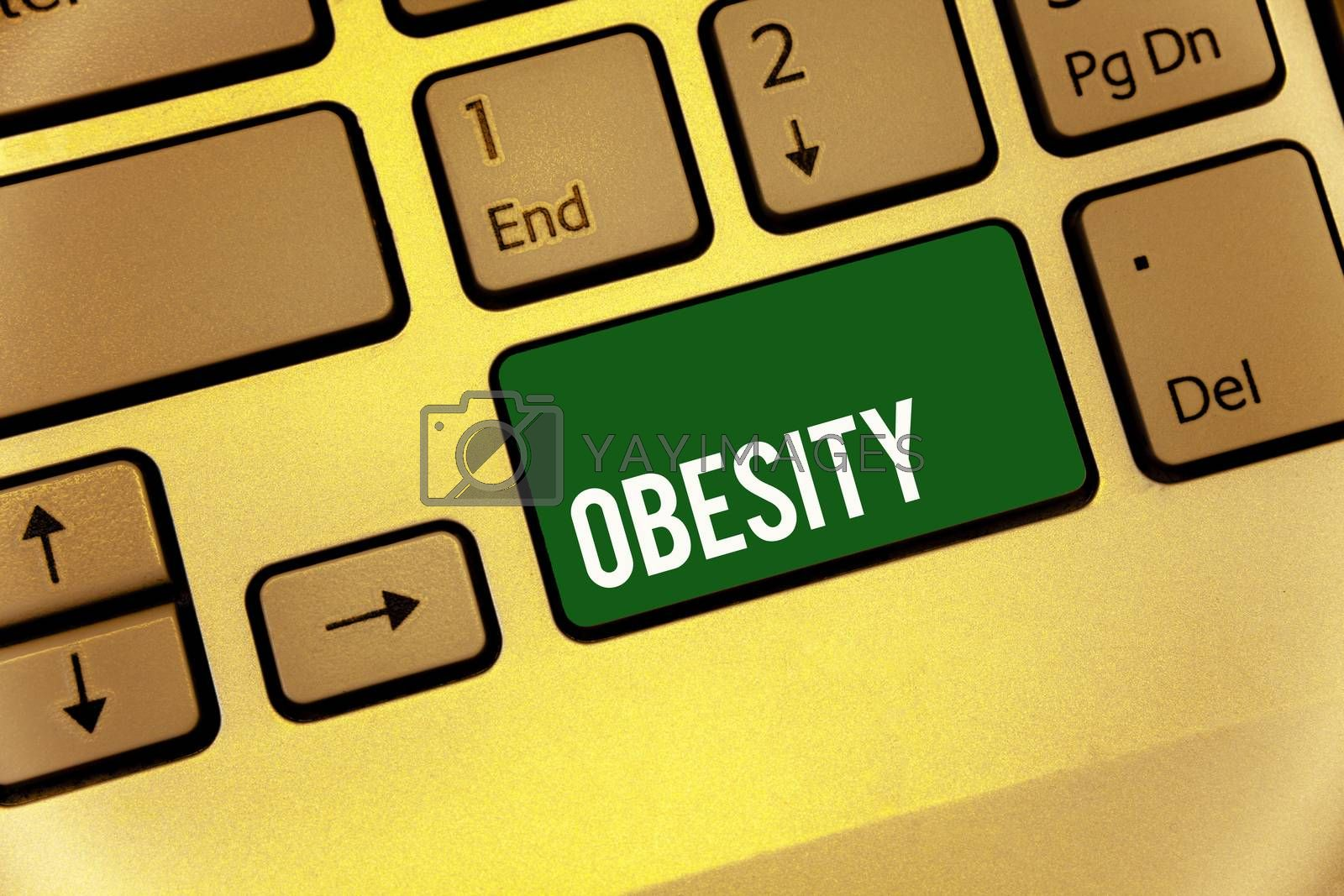 Conceptual hand writing showing Obesity. Business photo text Medical condition Excess of body fat accumulated Health problem Keyboard type message idea office work study program text computer