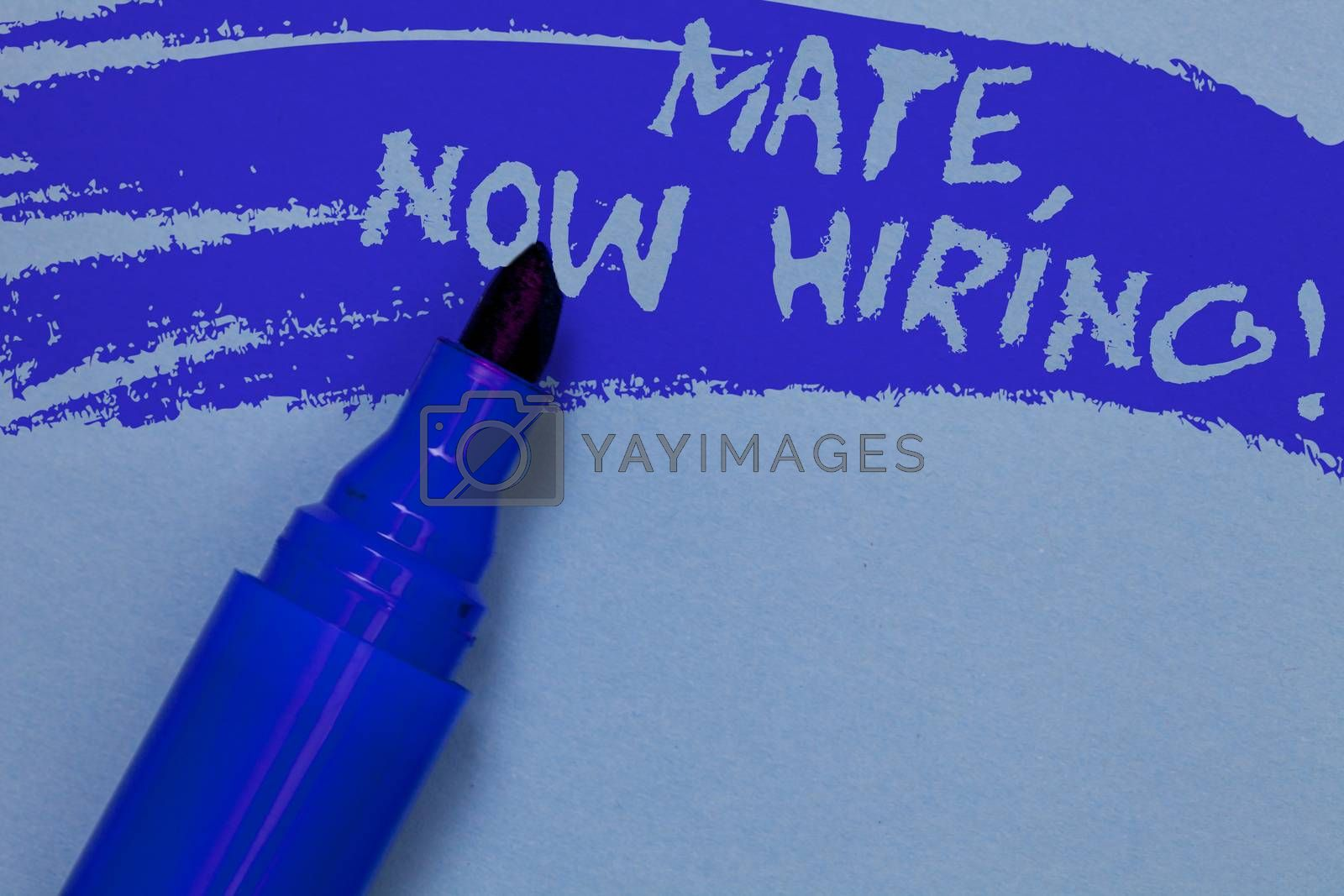 Writing note showing Mate, Now Hiring Motivational Call. Business photo showcasing Workforce Wanted Employees Recruitment Bold blue marker colouring sketch work type idea text plain background