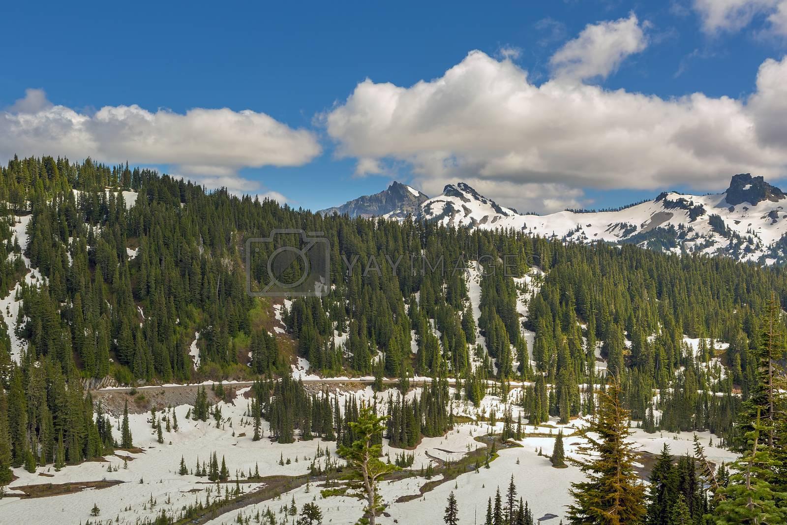 Mount Rainier National Park with snow covered Tatoosh Range scenic view in Washington State