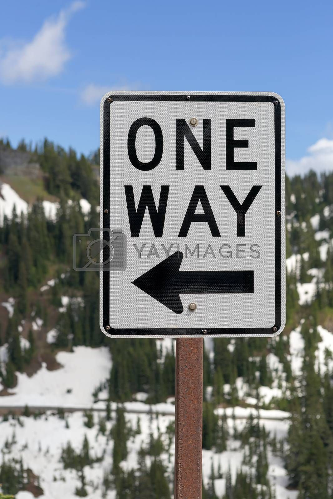 One Way road sign along highway in Mt Rainier National Park Washington State
