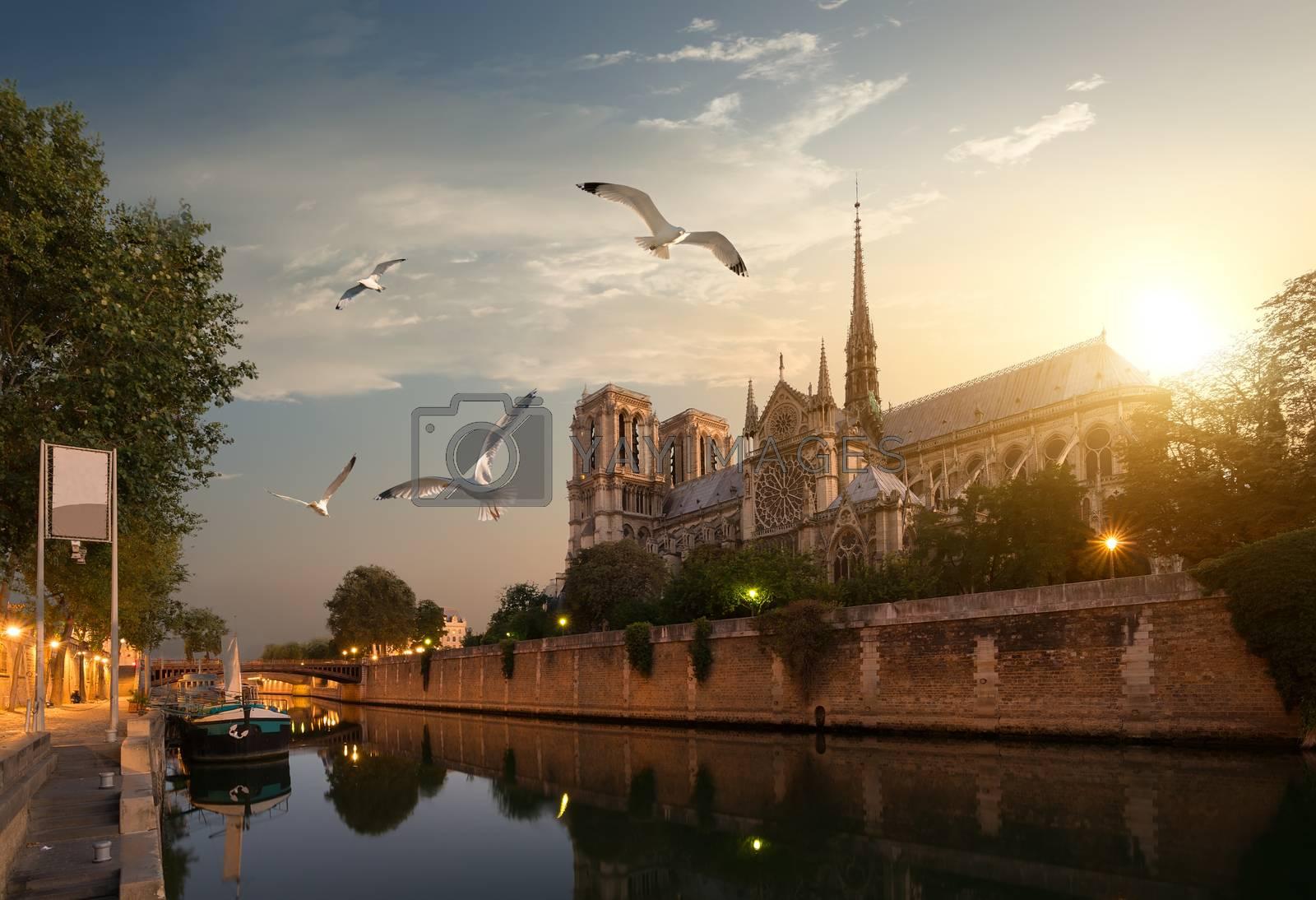 Dawn over Notre Dame de Paris, France