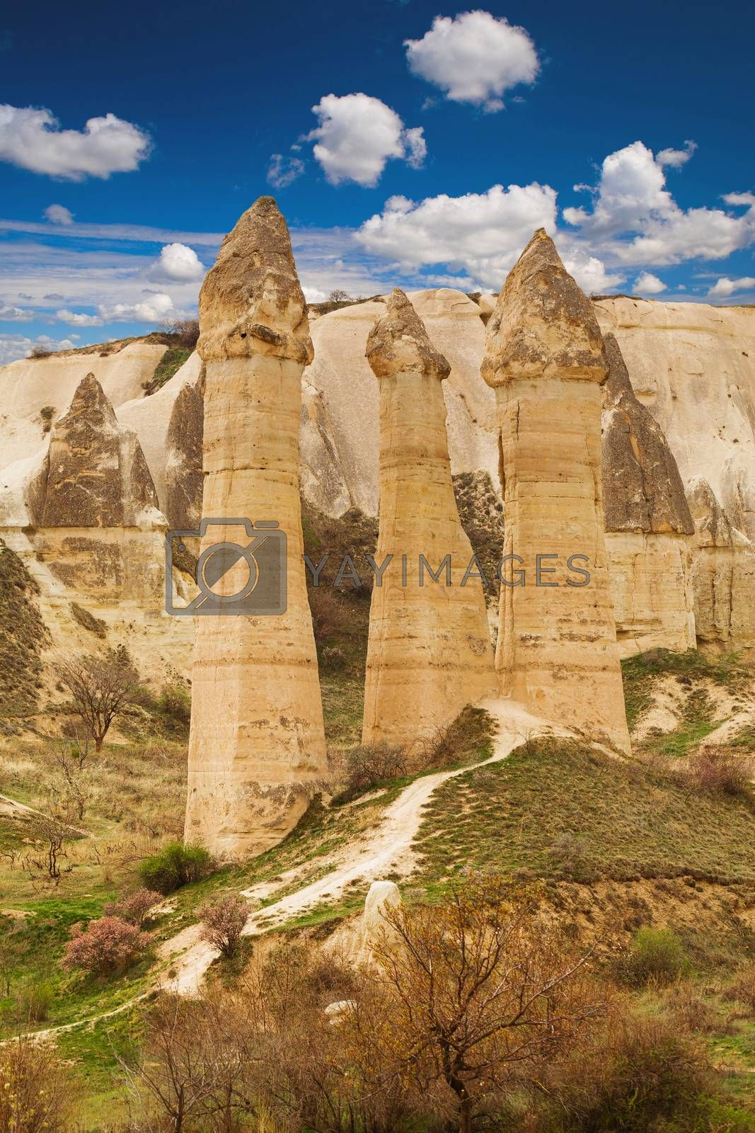 Cylindrical stone cliffs and cave houses in Love valley near Goreme, Turkey
