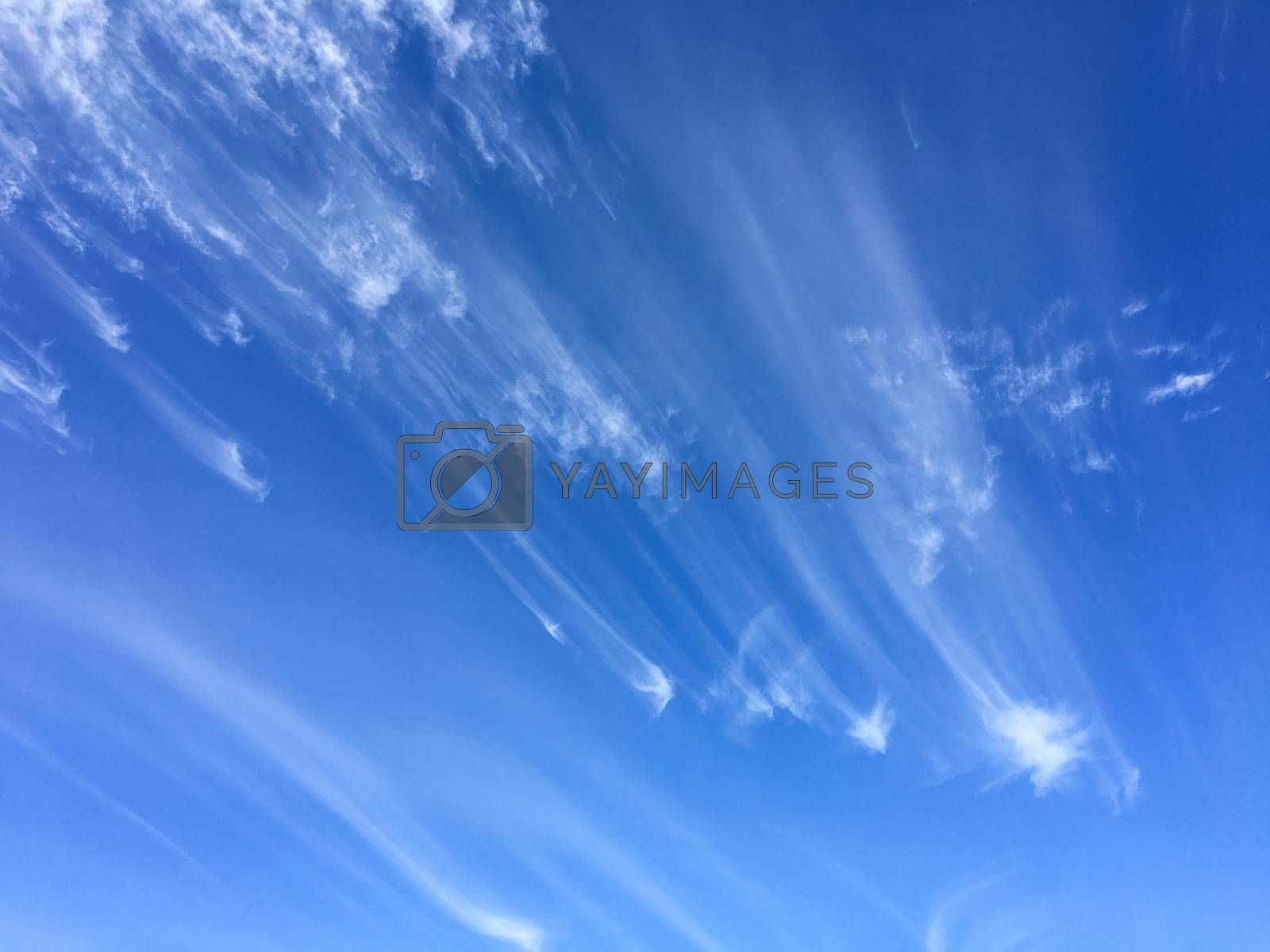 Windswept clouds and blue sky background