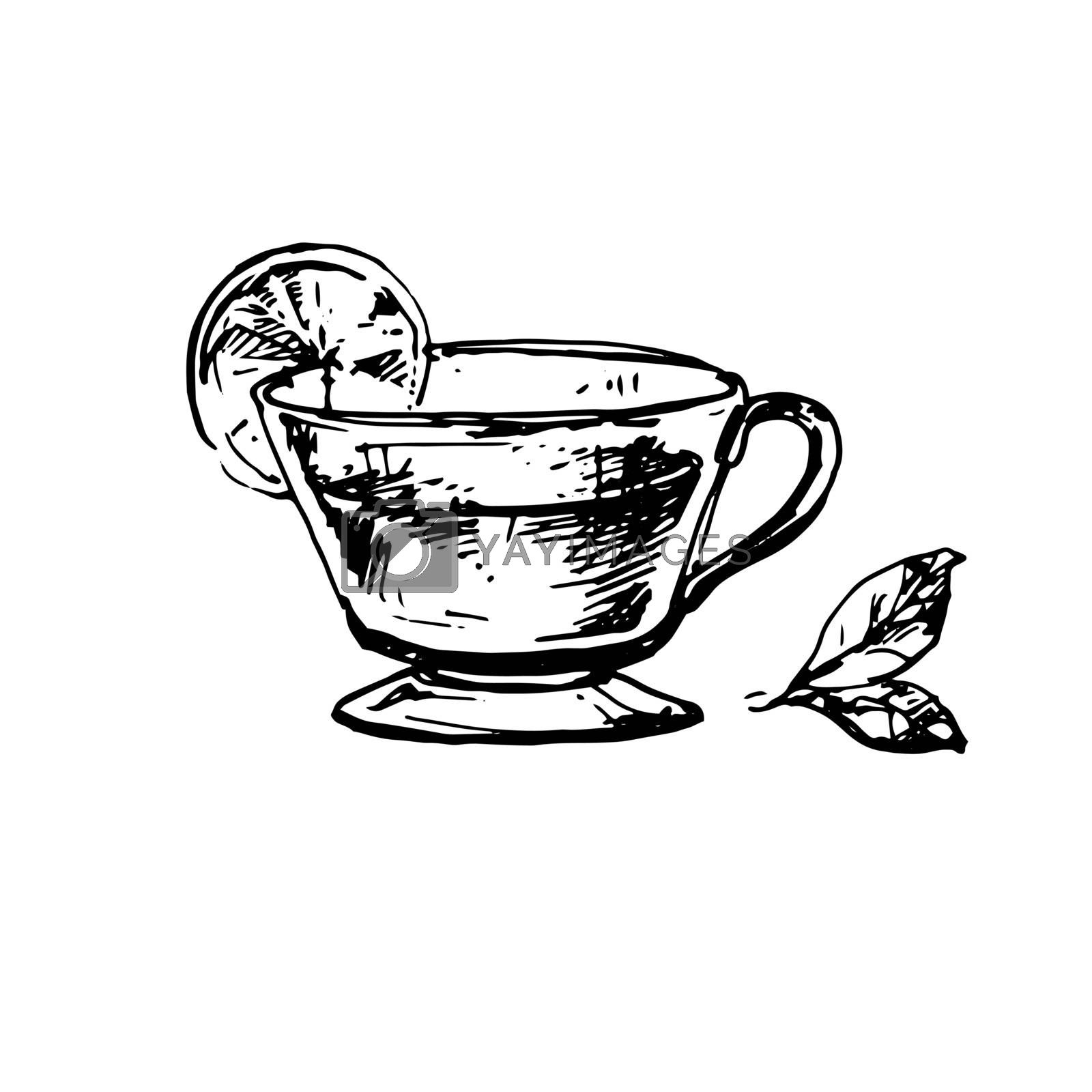 Cup of Tea with Mint and Lime. Hand Drawn Sketch of Tea. Doodle Outline. Vintage Hot Drink
