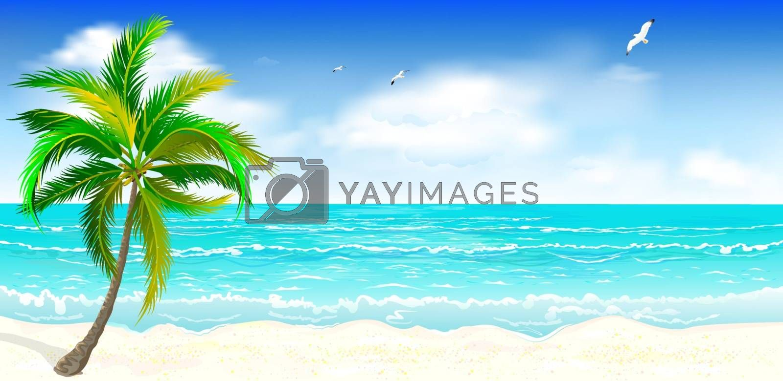 Landscape of the tropical shore. Landscape of the sea shore with palm tree. Sea shore with palm tree, blue sky and white clouds. Palm tree against the background of the sea, sky and clouds.