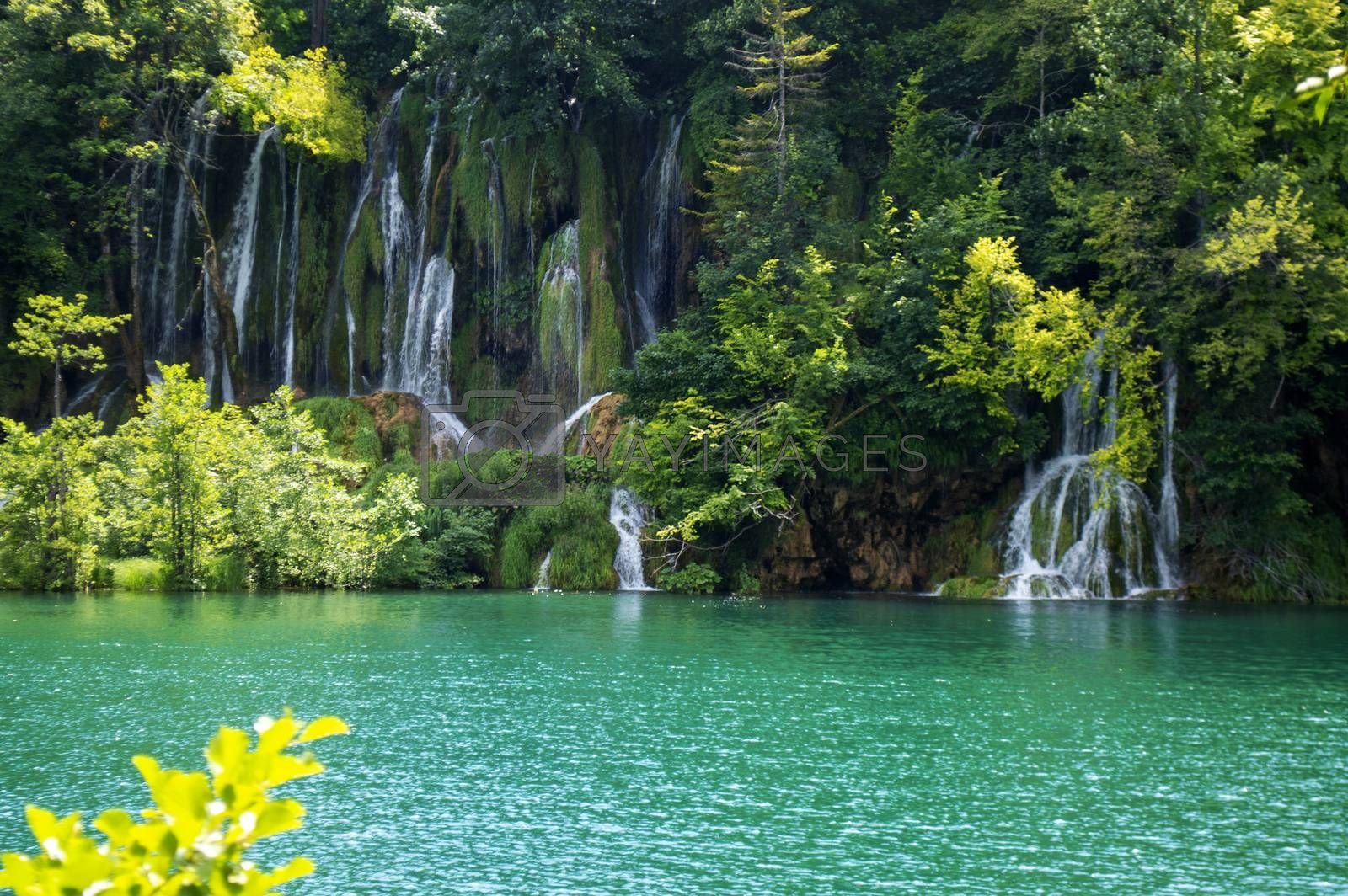 Small waterfalls in Plitvice with Lake and Trees in summer.
