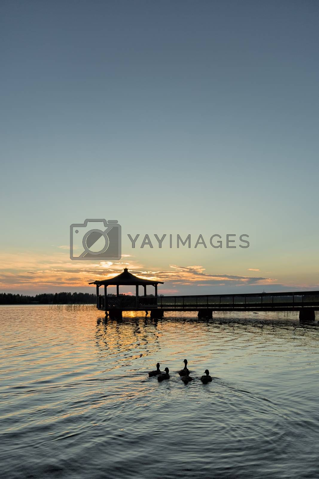 Gazebo in Lake with Mallard Ducks in Water at Sunset.