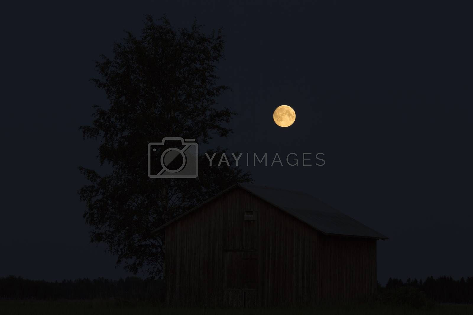 Barn in Farmfield by Tree with a Full Moon.
