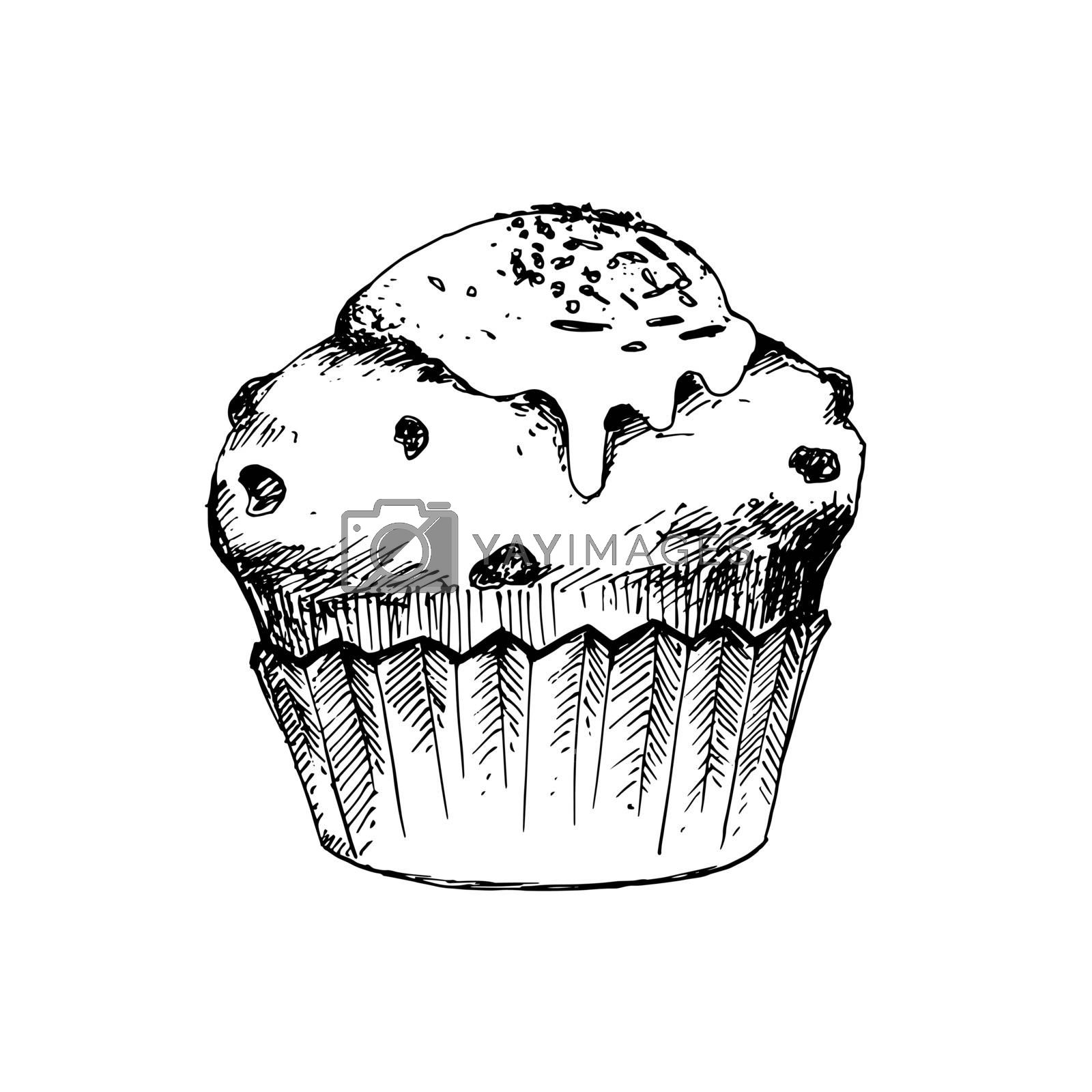 Hand Drawn Sketch of Cup Cake. Vintage Sketch. Great for Banner, Label, Poster
