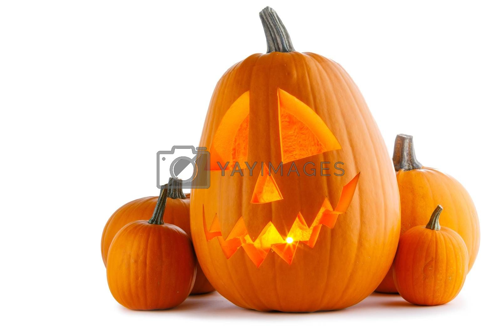 Group of Halloween Pumpkins isolated on white background