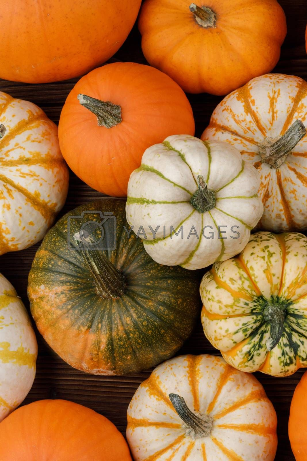Many orange pumpkins on wooden background, Halloween concept