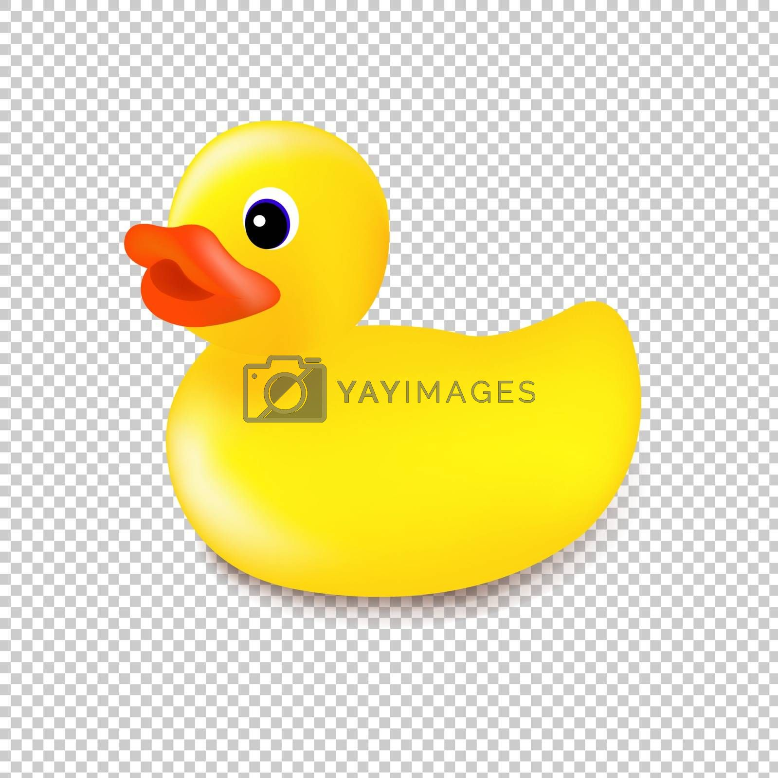 Rubber Duck Isolated Transparent Background With Gradient Mesh, Vector Illustration