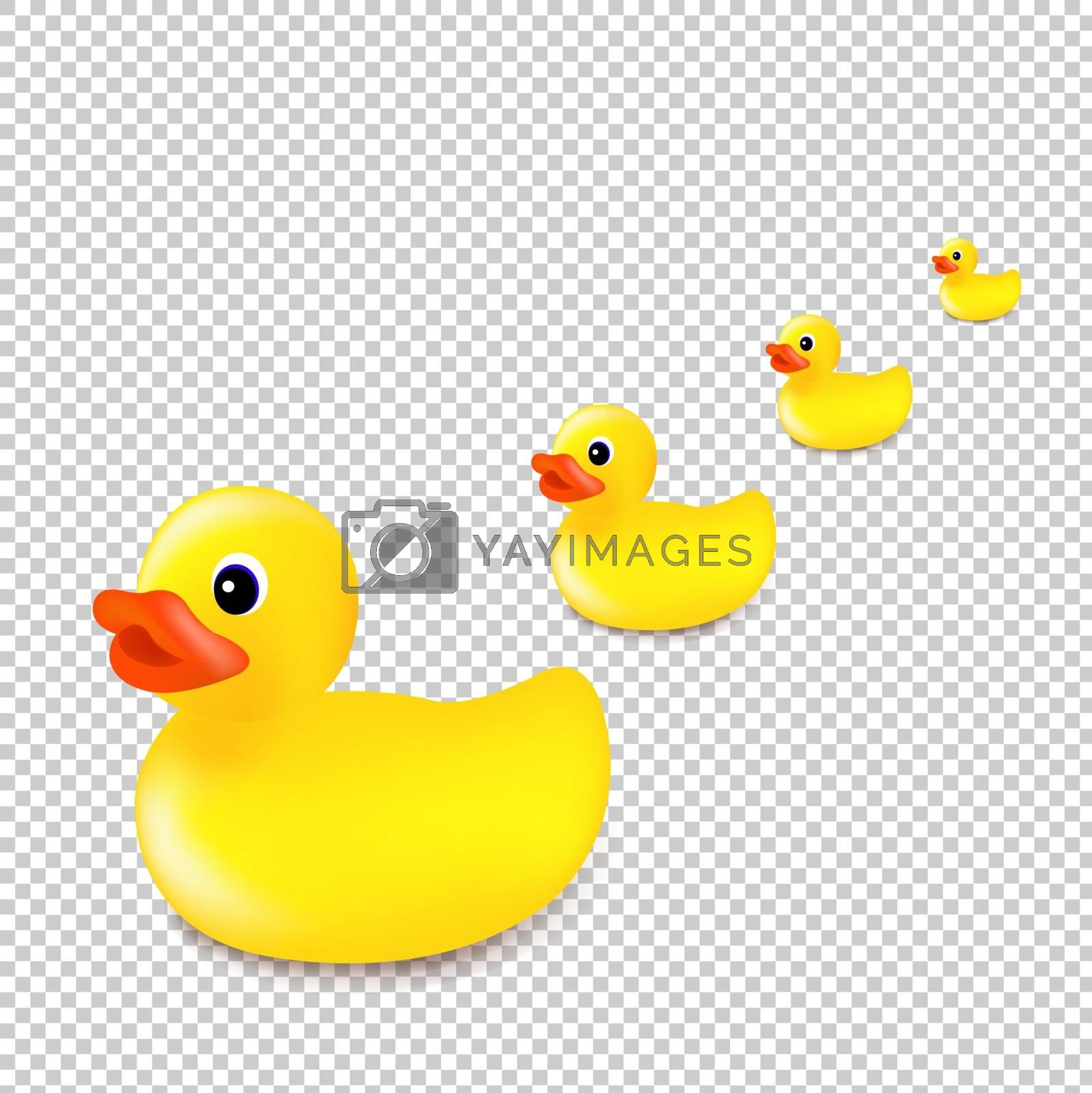 Rubber Ducks Isolated Transparent Background With Gradient Mesh, Vector Illustration
