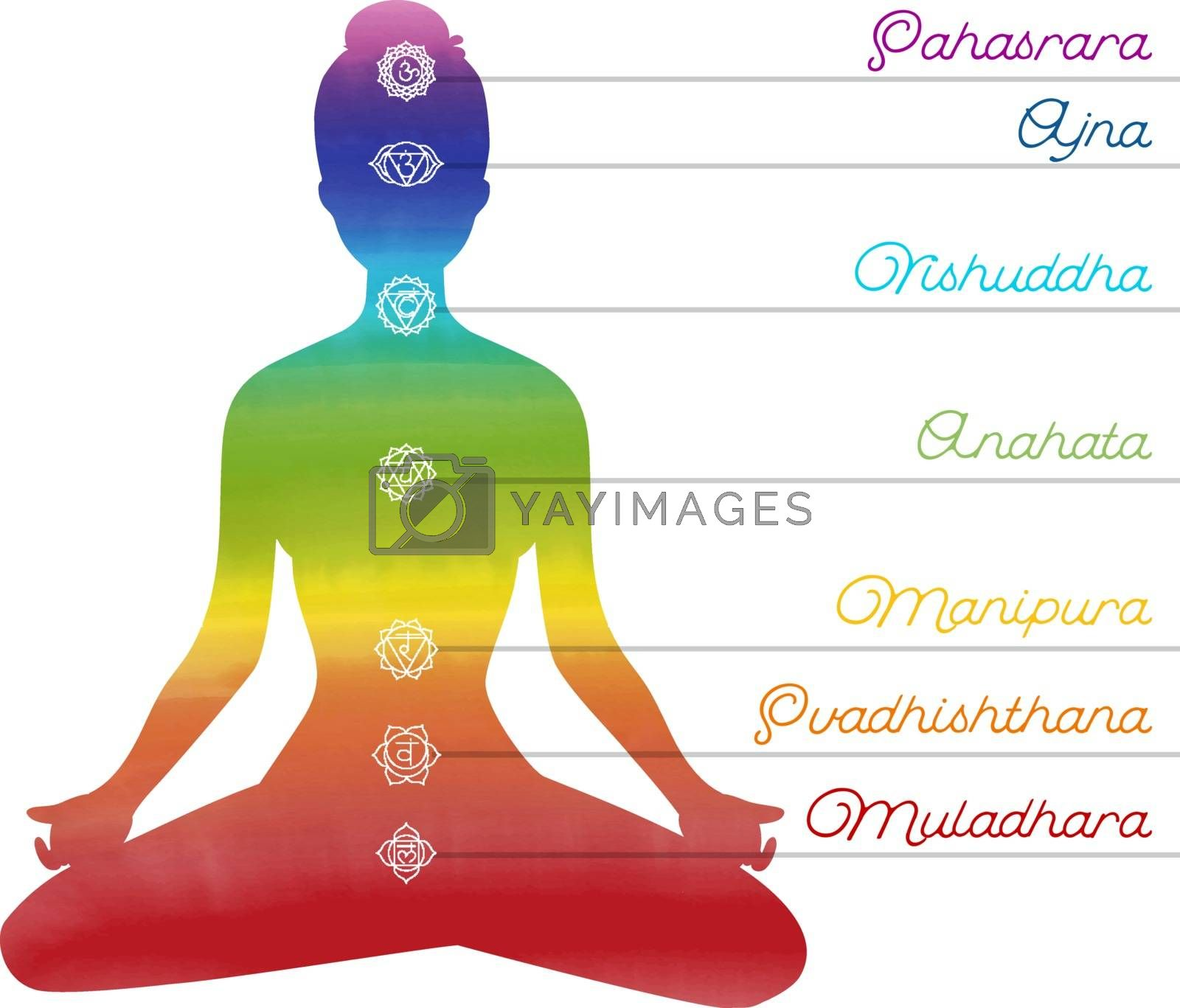 Vector illustration of Color chakras with woman
