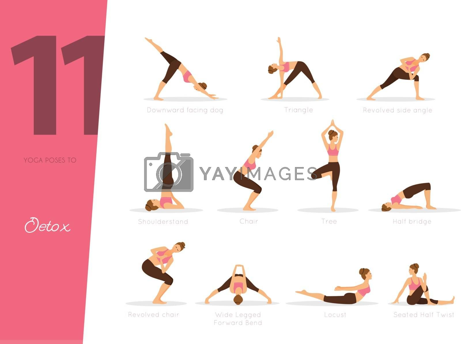 Vector illustration of 11 Yoga illustration to detox your body