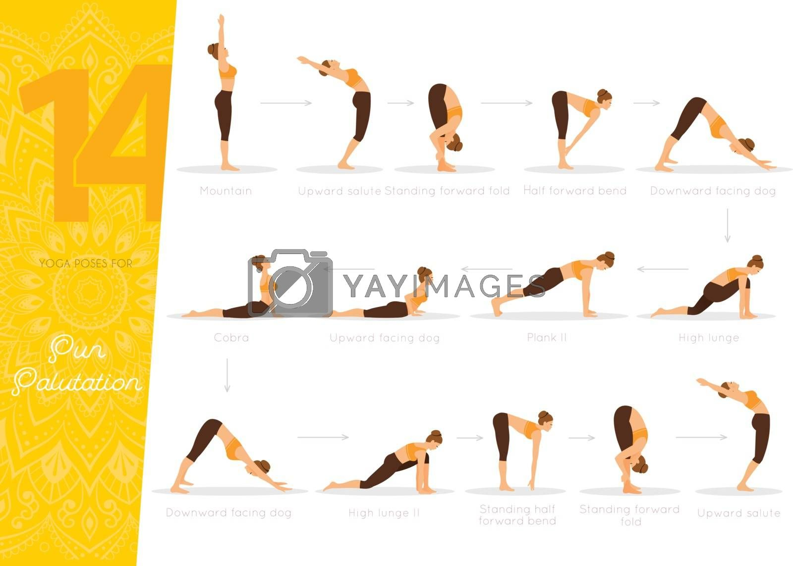Vector illustration of Sun Salutation (Surya Namaskara)