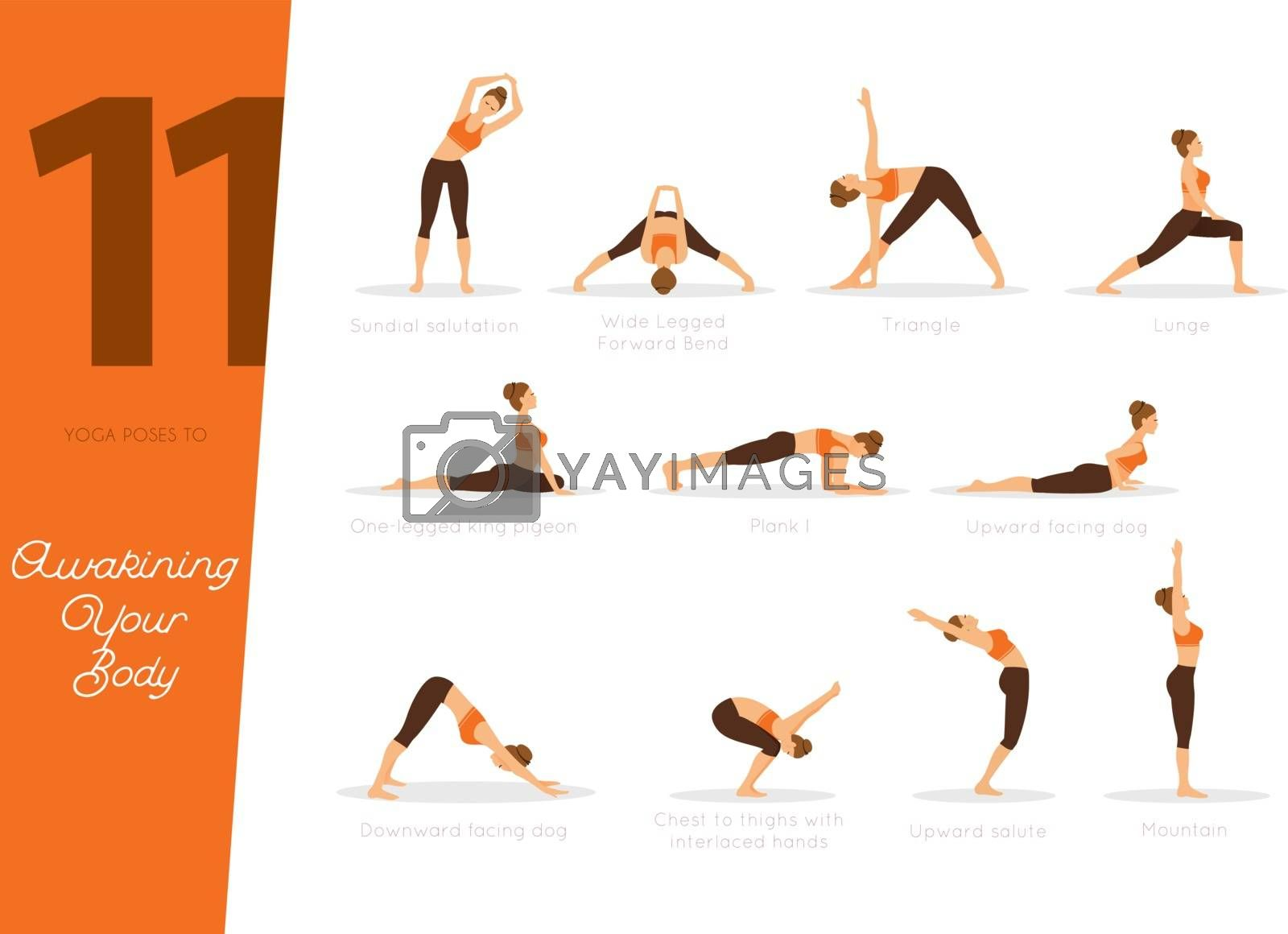 Vector illustration of 11 poses to awaking your body