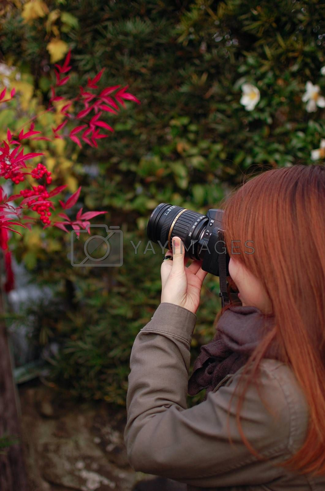 Japanese girl taking a picture of Red Leaf ''Momiji''. Fall is very colorful season of Japan. Fall Season of Kyoto is very good timing to see Japan.