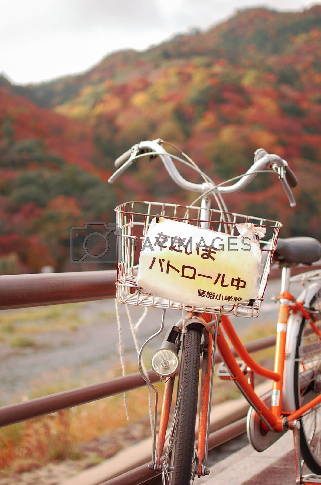 Bicycle on the parol. Fall is very colorful season of Japan. Fall Season of Kyoto is very good timing to see Japan.