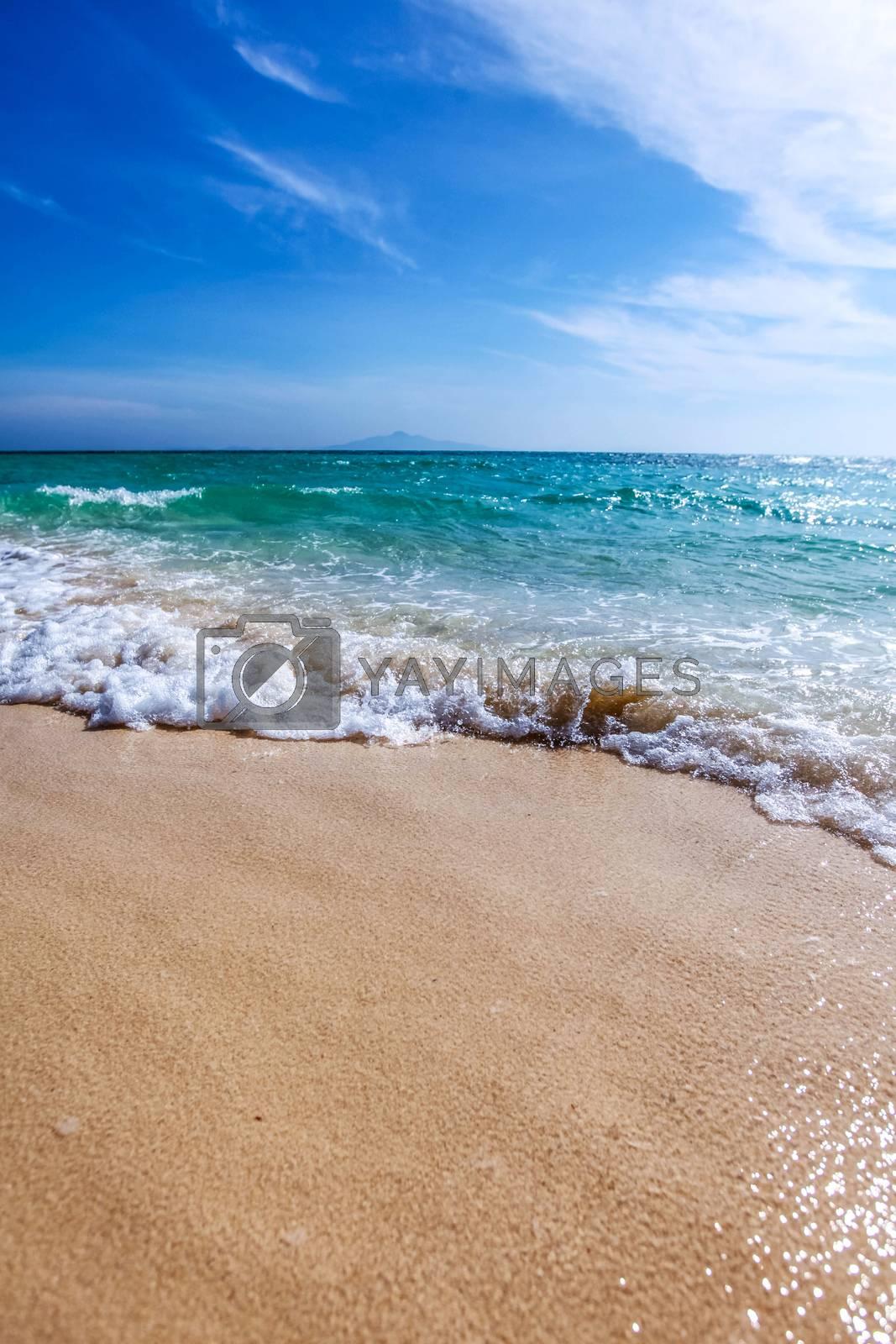 Wave of the sea on the sandy tropical beach