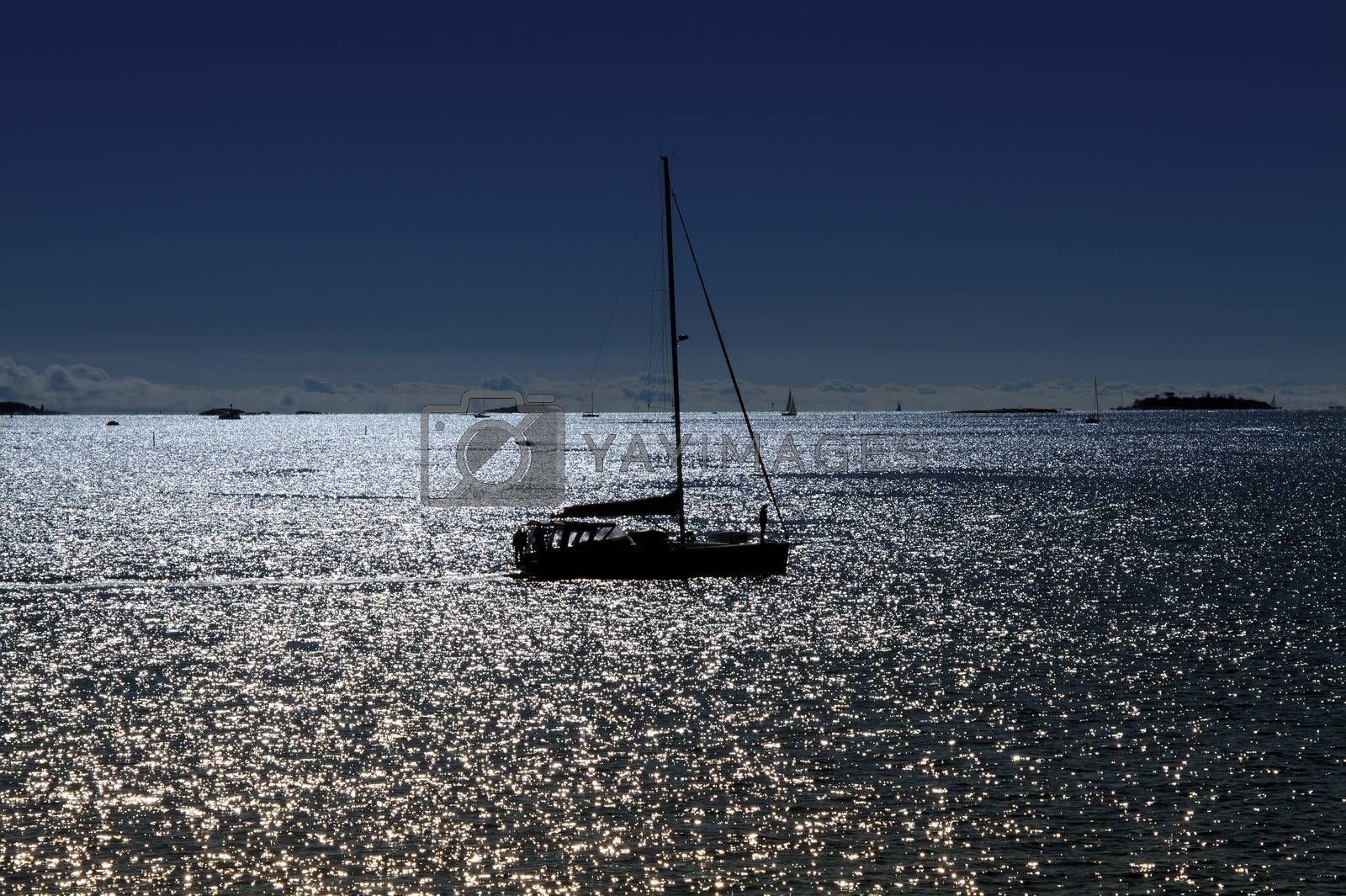 Sailboat on the sea in good weather. Horizon on the background.
