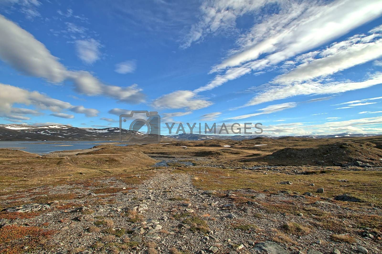 Arctic summer landscape at the high grounds of northern Norway during polar day when sun never sets.