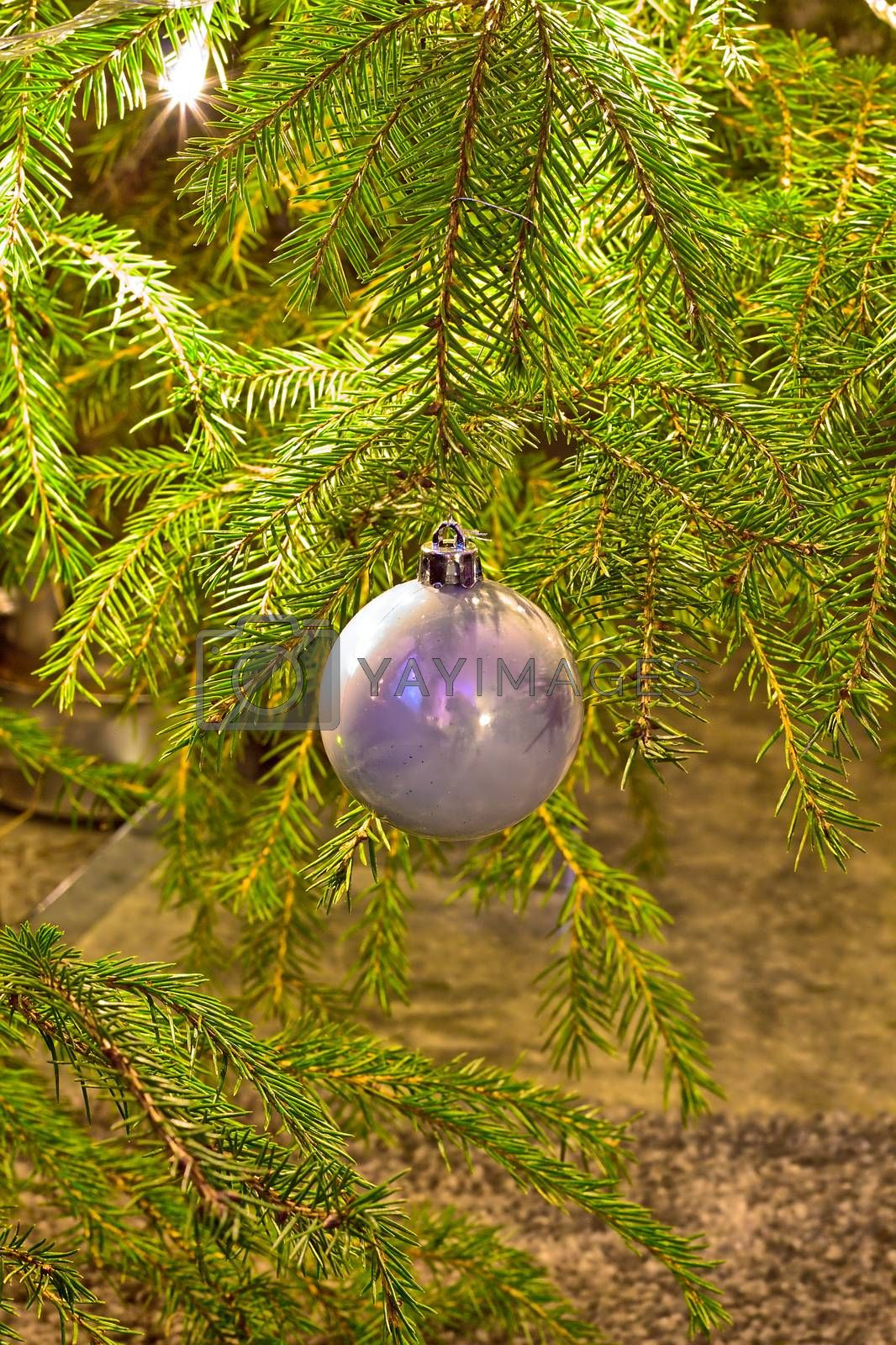 Only one round ornament hanging on the christmas tree.