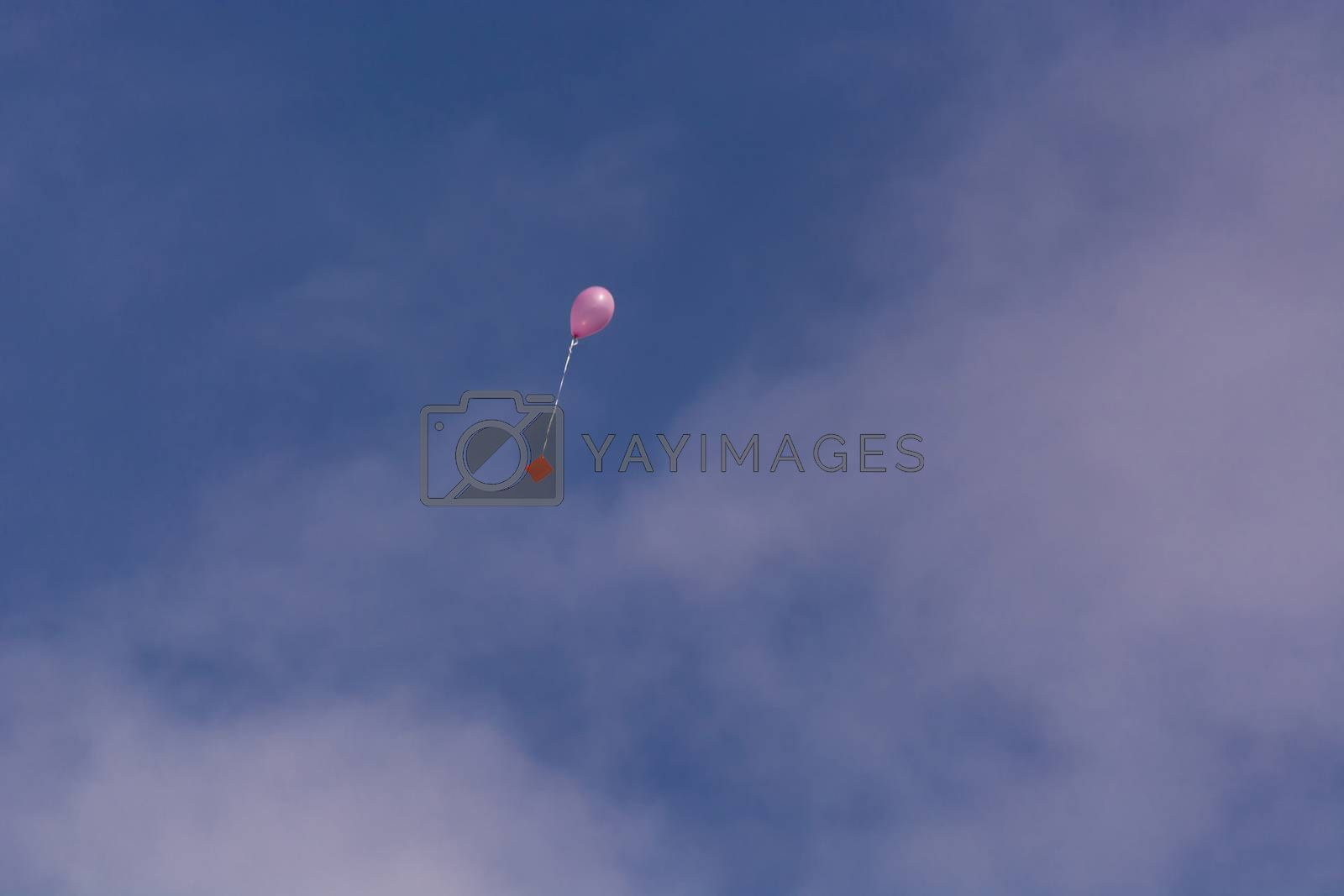 Pink balloon with ribbon and greeting card in front of blue sky