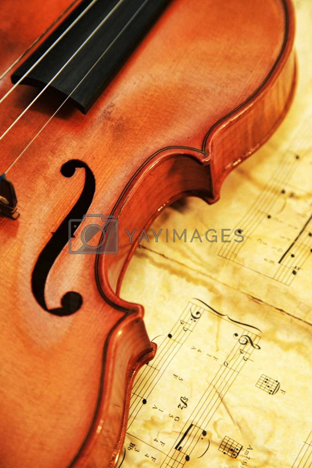 1937 old violin on the background of notes