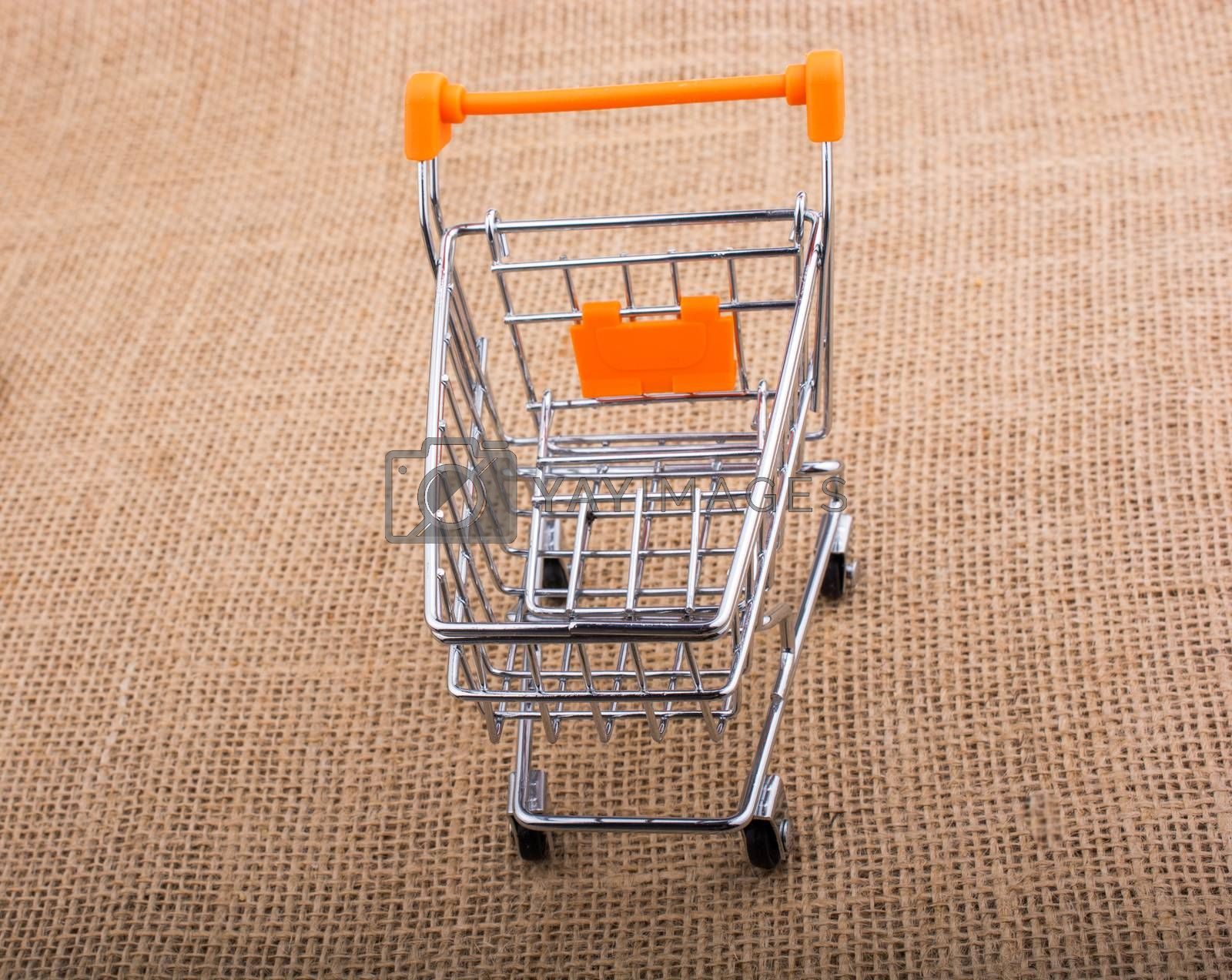 Shopping cart placed  on canvas background