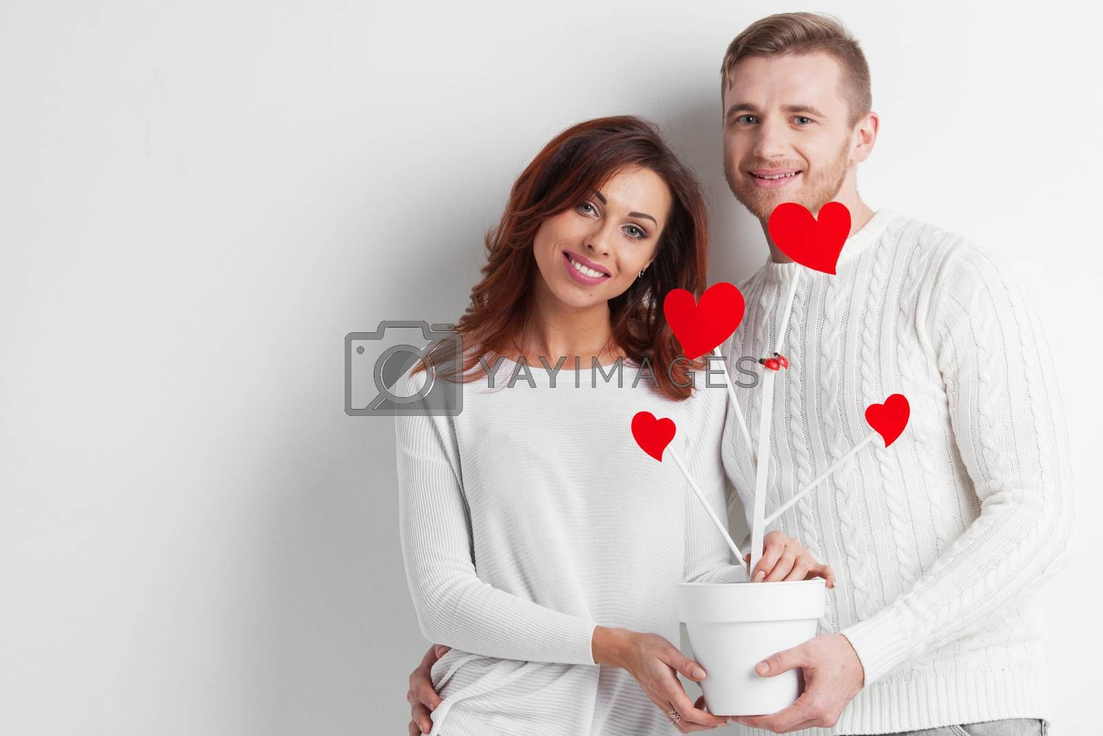 Couple of people holding together pot with tree of love with red hearts , white background